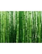 Le Bambou, fibre naturelle et écologique, pour vêtements ethiques.